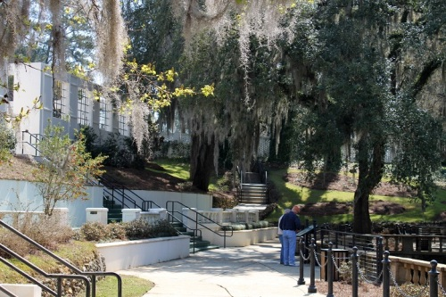 The area is surrounded by beautiful trees dripping in Spanish moss.